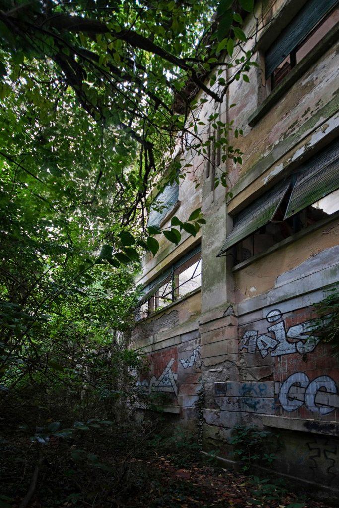 Linthout_Colonia-Bedin-Alghieri_Italia_02